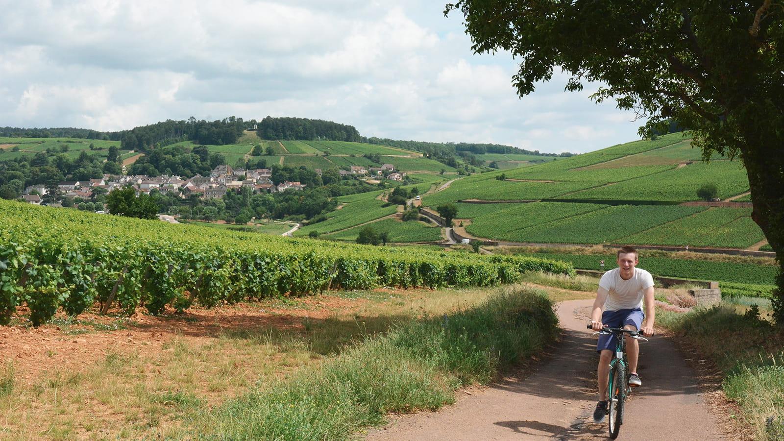 Voie des Vignes à vélo