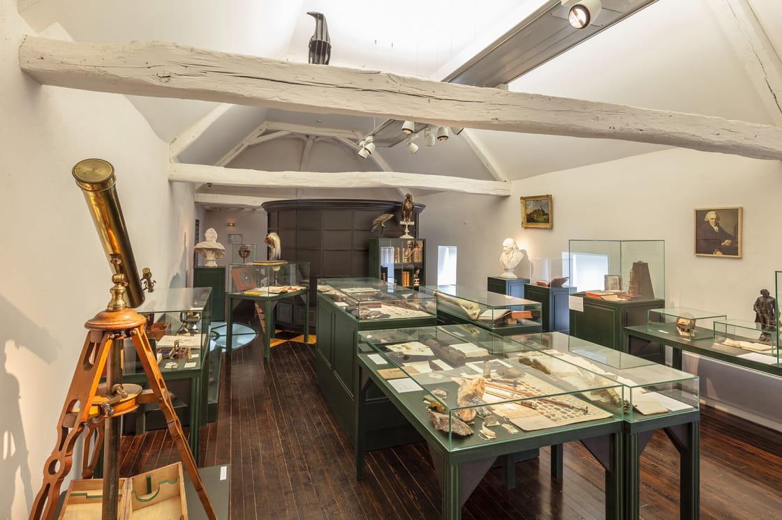 Visite du musée Buffon