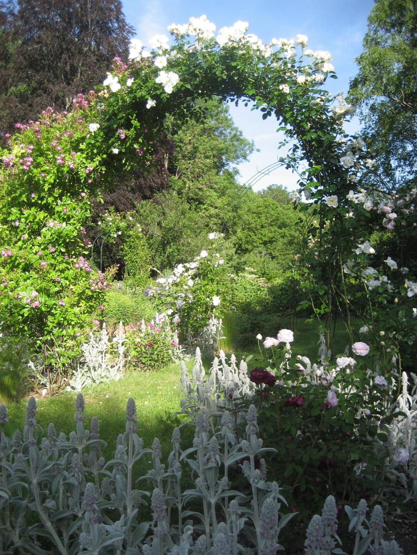 Parc à l'anglaise de l'Abbaye de Bèze