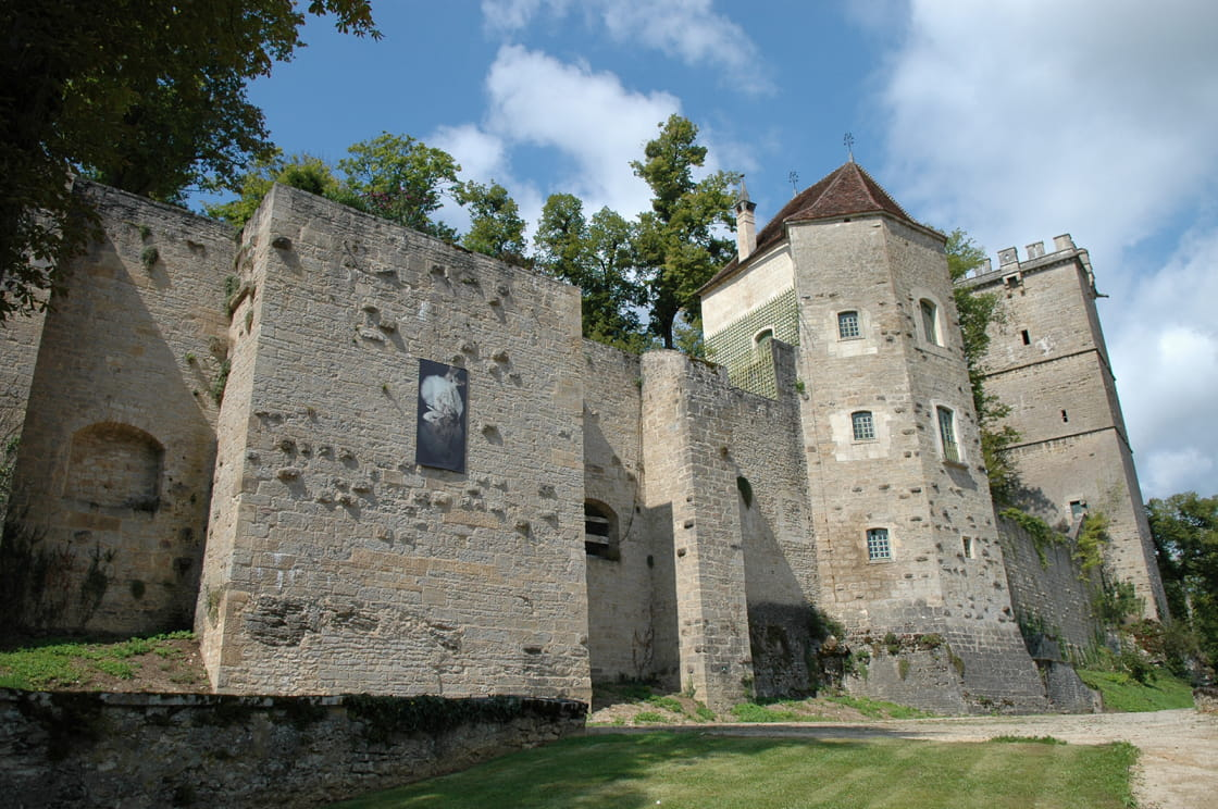 Tour de l'Aubespin et Tour Saint-Louis à Montbard