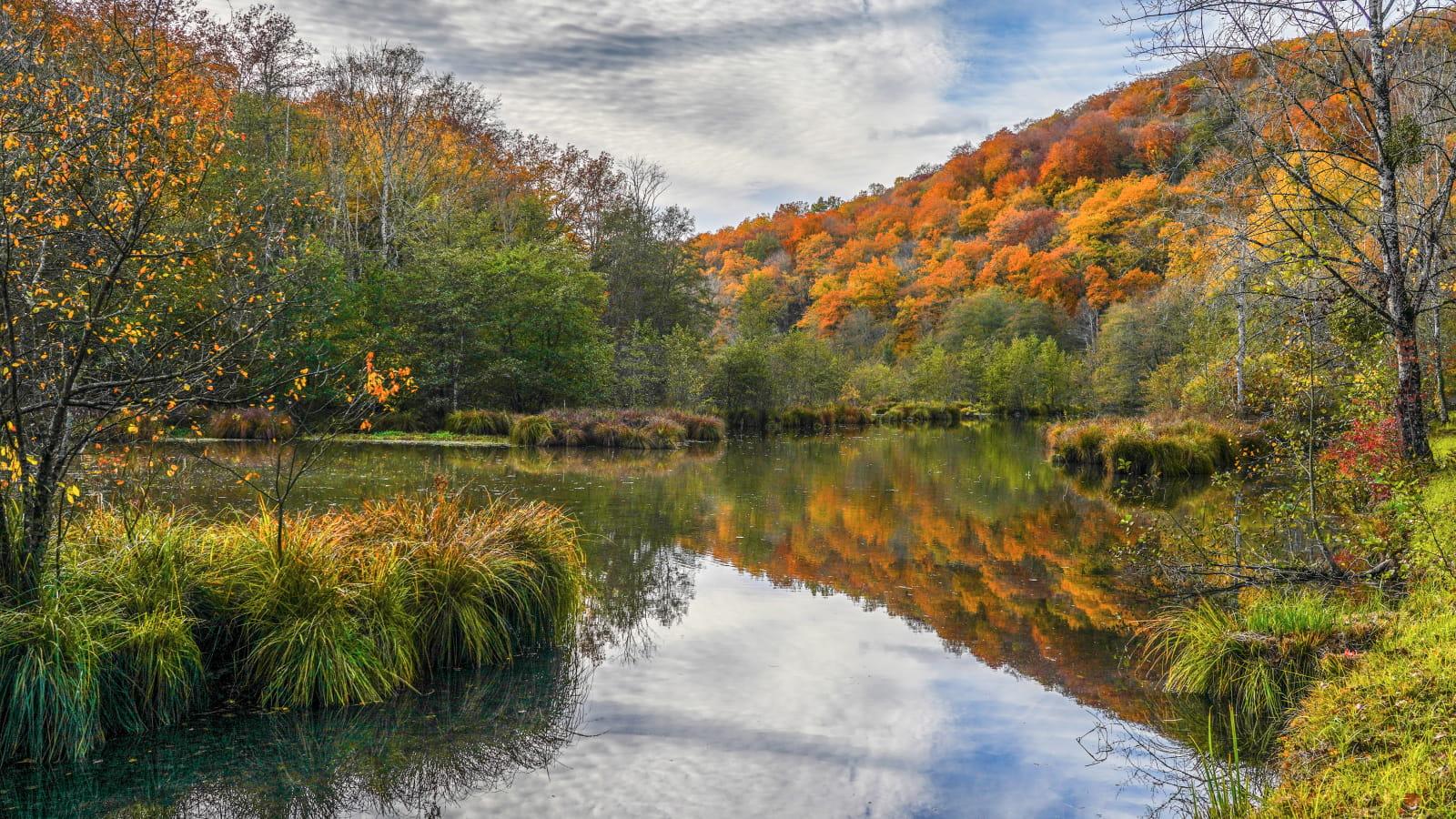 Le Brévon étang de la chouette